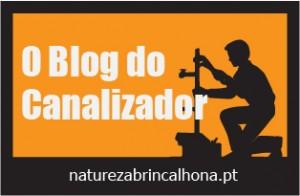 Canalizador Logo